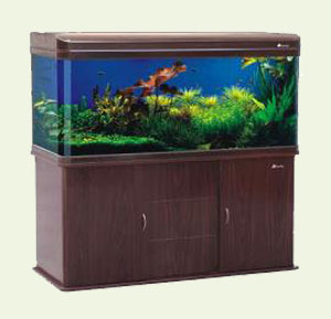 Fish Tanks, Aquarium Accessories and Supplies